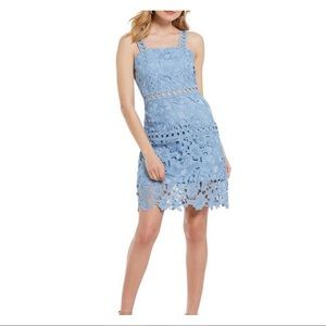 Sam Edelman • Lace Sheath Dress Sz 14
